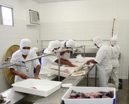Bahia Pesca abre inscri��es para curso gratuito de preparo de pescados