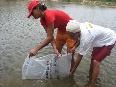 Ser�o beneficiadas cerca de 530 fam�lias de pescadores nas cidades de Paratinga, Riacho de Santana, Matina, Igapor�, Santana e Santa Maria da Vit�ria.