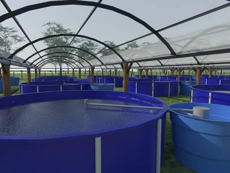 Bahia Pesca apresenta sistema de piscicultura para o semiárido