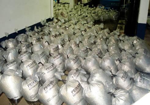 Piscicultores de Ribeirão do Lago recebem 40 mil alevinos